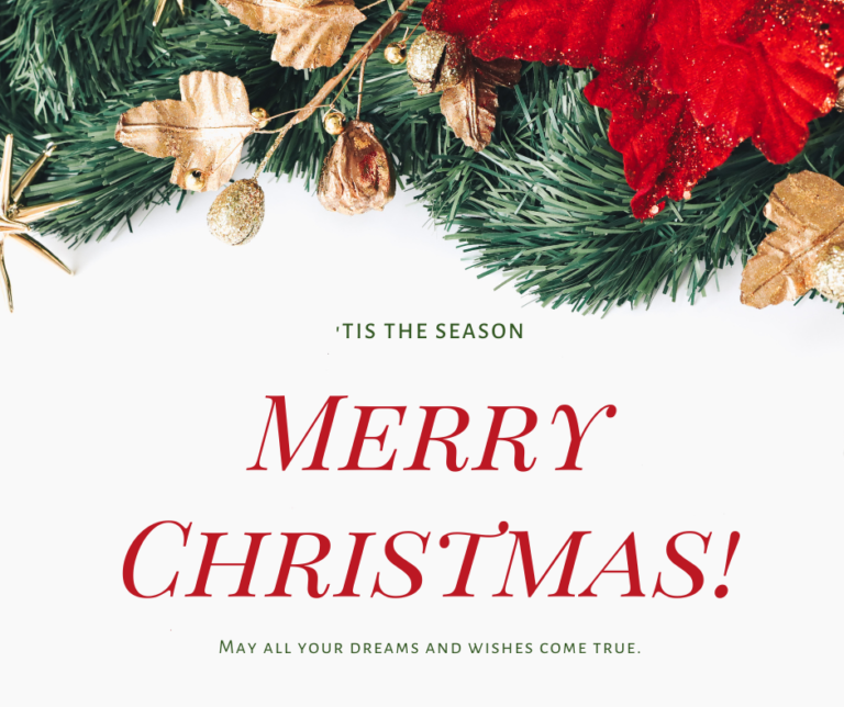 Merry Christmas from LaPensee Plumbing